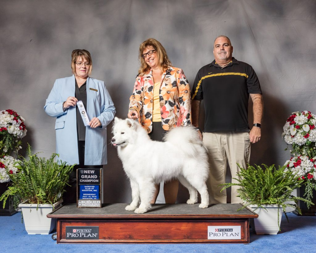Sadie's Grand Championship Win. July 18, 2018