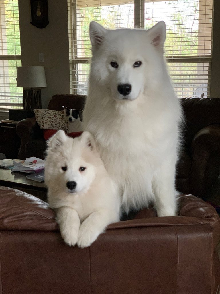 Marcy-16 weeks and Aster-23 months